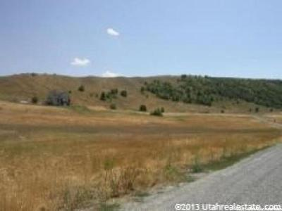Avon Residential Lots & Land For Sale: 1300 E Canyon Rd