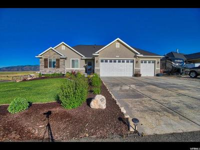 Eagle Mountain Single Family Home For Sale: 8551 N Peppergrass E