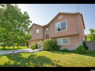Eagle Mountain Single Family Home For Sale: 4075 E Clark St