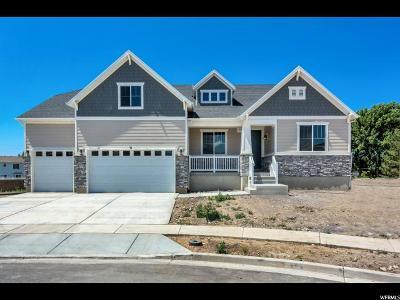 Lehi Single Family Home For Sale: 31 N Palomino Way W #115