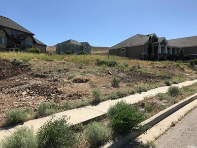 Lehi Residential Lots & Land For Sale: 4502 N Ridge View Way W