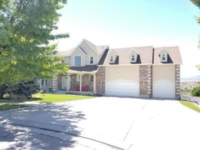 Draper Single Family Home For Sale: 12272 S Stephens View Cir