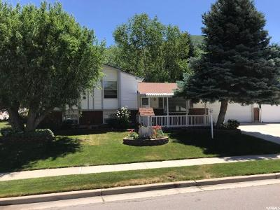 Cottonwood Heights Single Family Home For Sale: 7563 S 3395 E