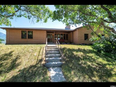 Santaquin Single Family Home For Sale: 465 W 200 N
