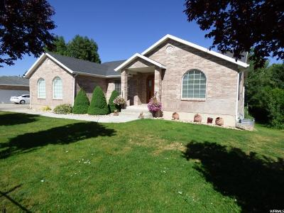 Payson Single Family Home For Sale: 1475 S Highway 198 W