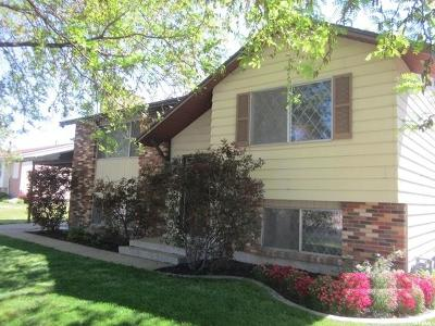 Layton Single Family Home For Sale: 596 N 800 E