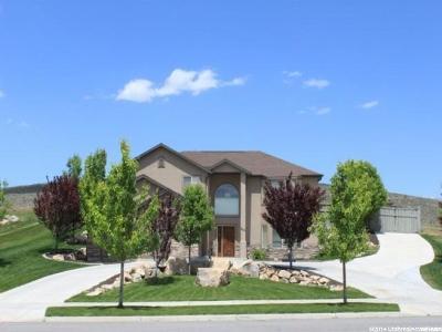 Eagle Mountain Single Family Home For Sale: 2213 E Lone Tree Pkwy N