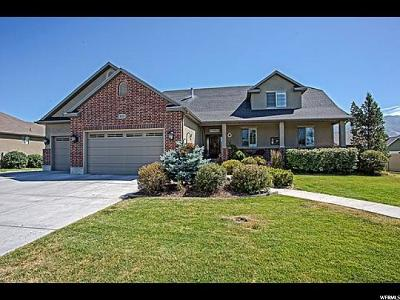 Kaysville Single Family Home For Sale: 1011 S View Crest Ln