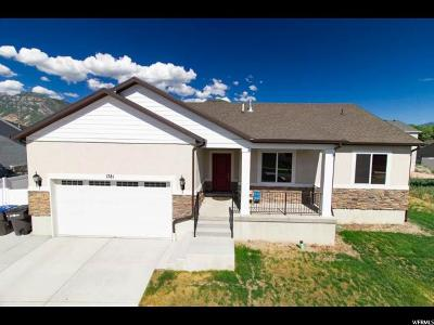 Provo Single Family Home For Sale: 1781 S 680 W