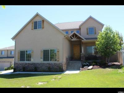 Eagle Mountain Single Family Home For Sale: 7691 N Silver Lake Pkwy W