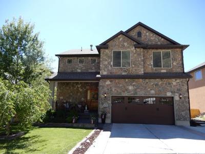 Cedar Hills Single Family Home For Sale: 10357 Tamarack Way