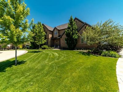 Lehi Single Family Home For Sale: 780 N 2375 W