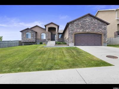Eagle Mountain Single Family Home For Sale: 8645 N Franklin Dr E