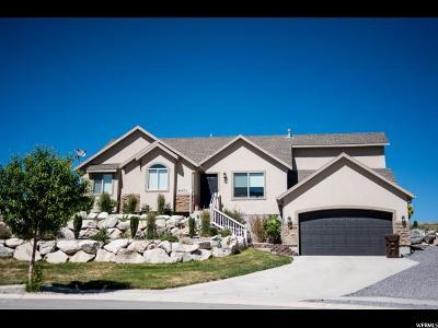 Eagle Mountain Single Family Home For Sale: 4001 E Eagle Top Ct N