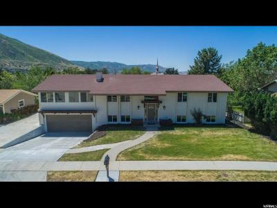 Sandy Single Family Home For Sale: 11466 S High Mesa Dr