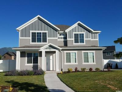 Springville Single Family Home For Sale: 701 W 300 N