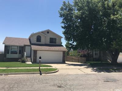 Layton Single Family Home For Sale: 1246 E 2450 N