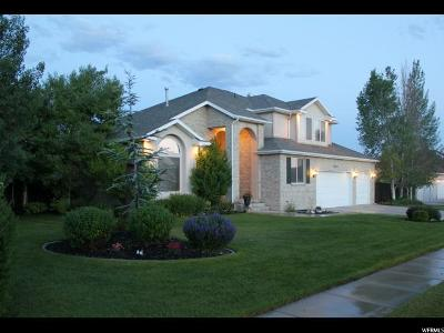 Highland Single Family Home For Sale: 10278 N Mystic Dr