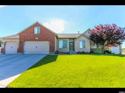 West Jordan Single Family Home For Sale: 8964 Black Pine St