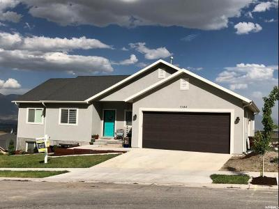 Eagle Mountain Single Family Home For Sale: 7194 N Skyview Ln