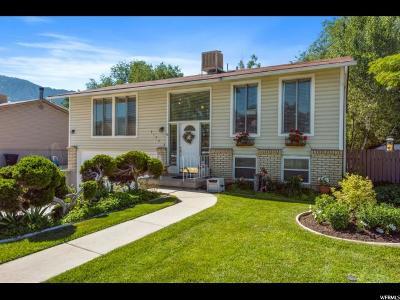 Sandy Single Family Home For Sale: 1174 Violet Dr