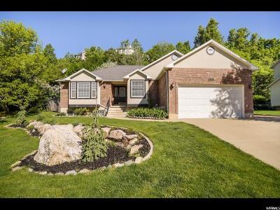 Layton Single Family Home For Sale: 2401 E Oak Ln N