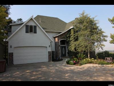 Provo Single Family Home For Sale: 4741 N Brentwood Cir