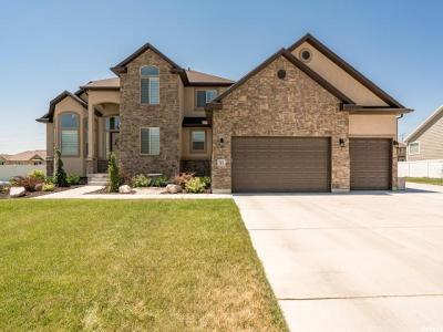 Kaysville Single Family Home For Sale: 78 S Brady Ln W