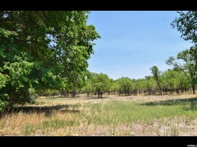 Price UT Residential Lots & Land For Sale: $80,000