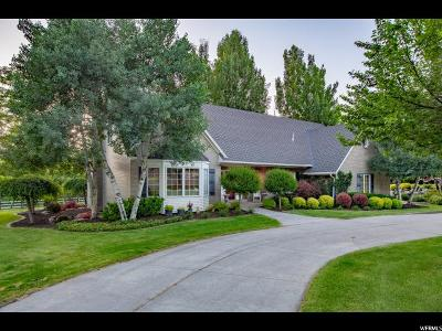 Alpine Single Family Home For Sale: 1179 N Moyle Dr