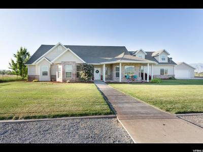 Spanish Fork Single Family Home For Sale: 3742 W 7550 S