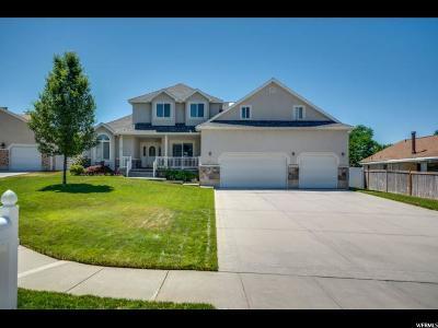 Sandy Single Family Home For Sale: 950 E Chapada Cir S