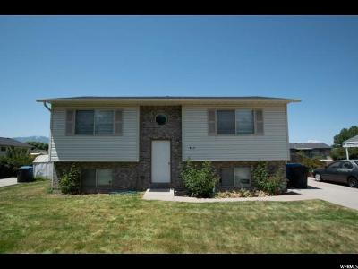 Logan Single Family Home For Sale: 863 S 300 W