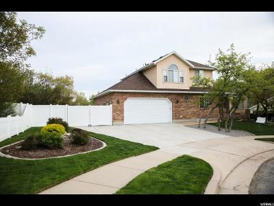 Layton Single Family Home For Sale: 2802 E 1975 N