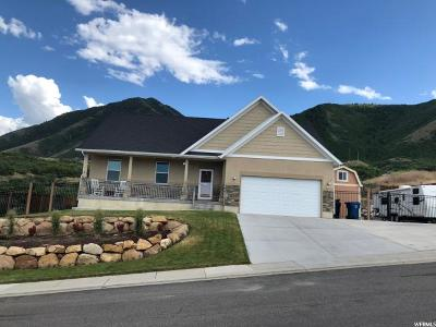 Spanish Fork Single Family Home For Sale: 2628 Oakridge Dr