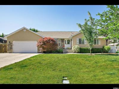 American Fork Single Family Home For Sale: 559 W 860 N