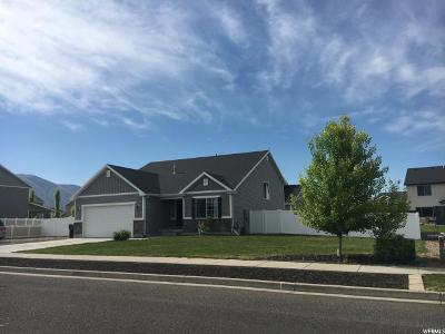 Nibley Single Family Home For Sale: 1060 W Nibley Park Ave