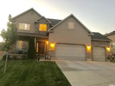 Eagle Mountain Single Family Home For Sale: 9047 N Barton Creek Dr