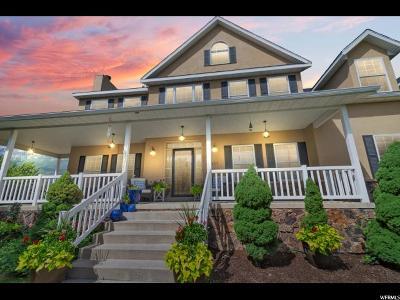 Alpine Single Family Home For Sale: 1311 E Willow Springs Cir