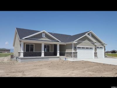 Erda Single Family Home For Sale: 4451 N Droubay Rd E