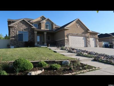 West Valley City Single Family Home For Sale: 6301 W Terrace Ridge Dr