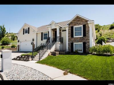 Smithfield Single Family Home For Sale: 988 E Summit Dr