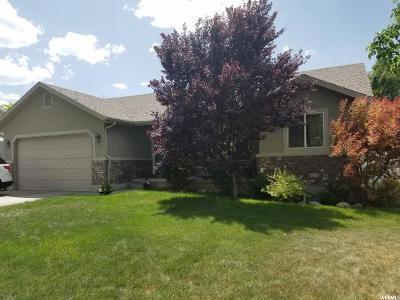 Salem Single Family Home For Sale: 704 S 180 W