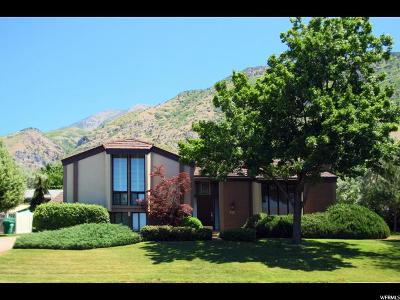 Provo Single Family Home For Sale: 3016 N Apache Ln
