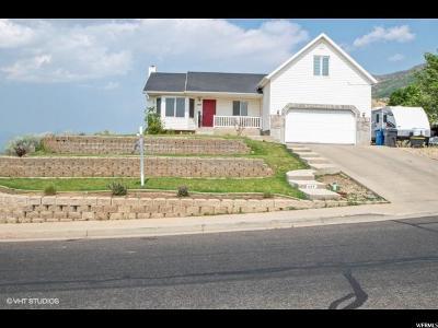 Santaquin Single Family Home For Sale: 607 E 130 S