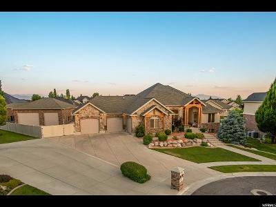 Davis County Single Family Home For Sale: 861 W 2860 S