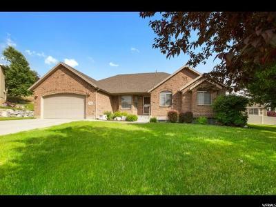 Pleasant Grove Single Family Home For Sale: 702 E 1170 N