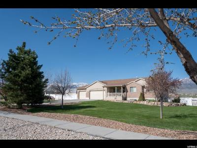 Grantsville Single Family Home For Sale: 345 N North Wrathall Cir W