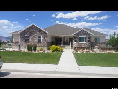 Huntington UT Single Family Home For Sale: $398,000