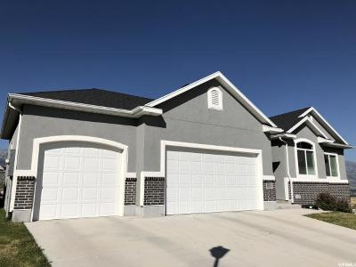 Lehi Single Family Home For Sale: 3814 N 750 W #109